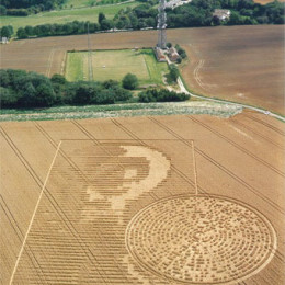 Sparsholt near Winchester Hampshire crop circle